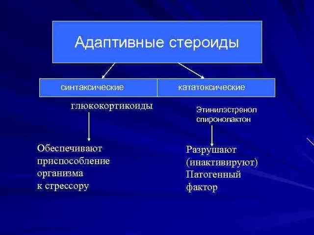 Адаптационный синдром его стадии, патофизиология