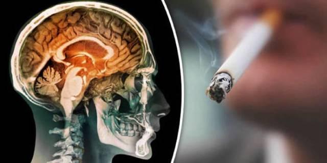 Влияние курения на нервную систему человека