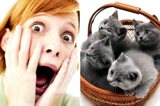 Боязнь щекотки: как называется фобия, психология